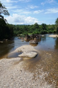 We dream about a clean river. -photo was taken in Lubuk Alai, West Sumatra