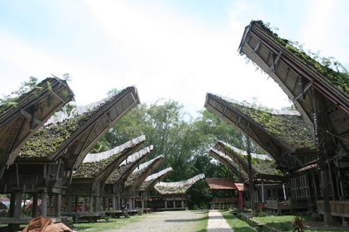 Kete' Kesu: tempat yang terkenal dengan deretan tongkonan - rumah adat Toraja